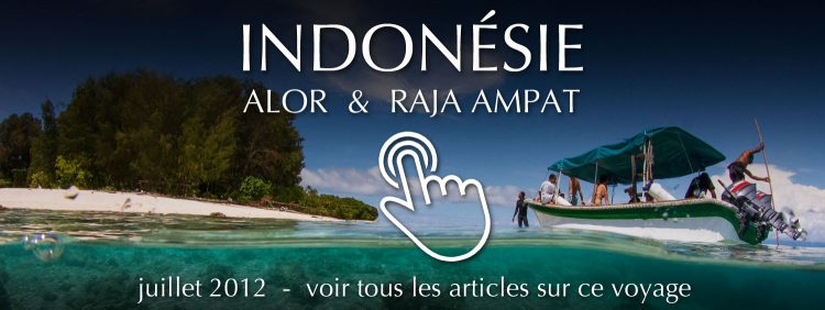 Travel Indonesia: Alor and Raja Ampat - July 2012