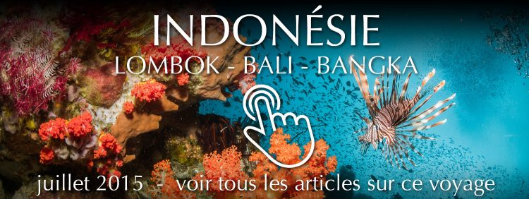 Indonesia Travel 2015