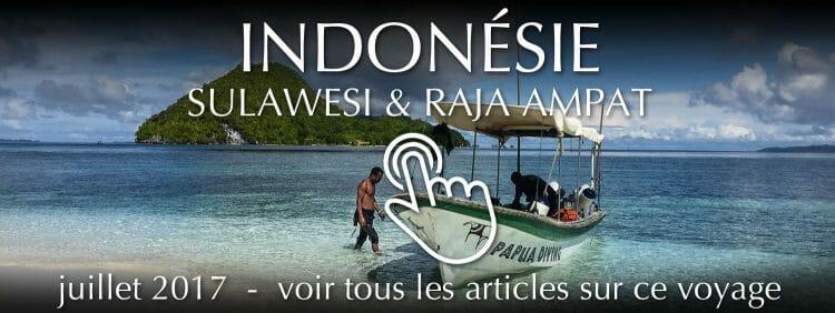 Voyage Sulawesi et Raja Ampat - juillet 2017