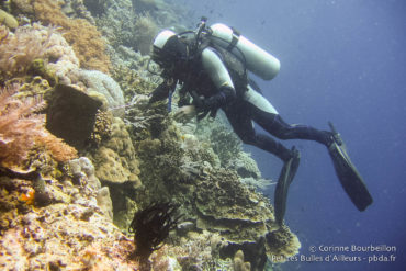 My guide Salim, looking for the little beasts stuck on the fall of Bunaken. Sulawesi, Indonesia, July 2007.
