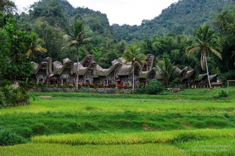 The Toraja village of Ke'te Kesu, south of Rantepao.