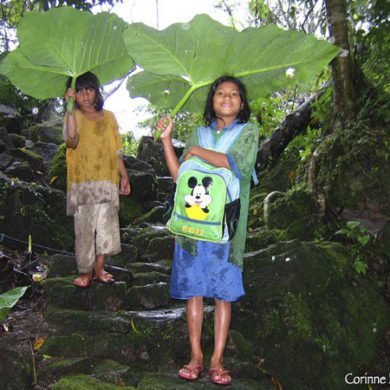 Two girls are sheltering under big leaves, as an umbrella. Philippines, February 2008.