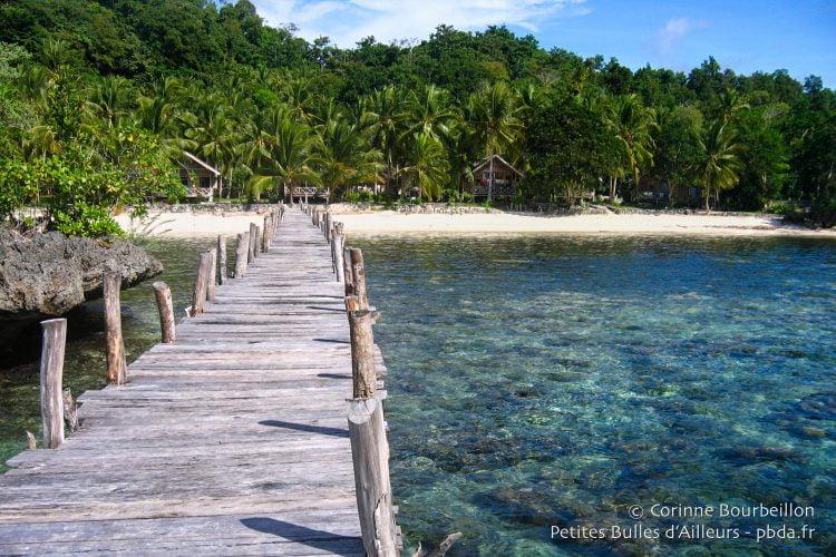 On arrive au resort Island Retreat par un immense ponton de bois, qui surplombe une eau transparente, idéale pour le snorkeling (palmes-masque-tuba).