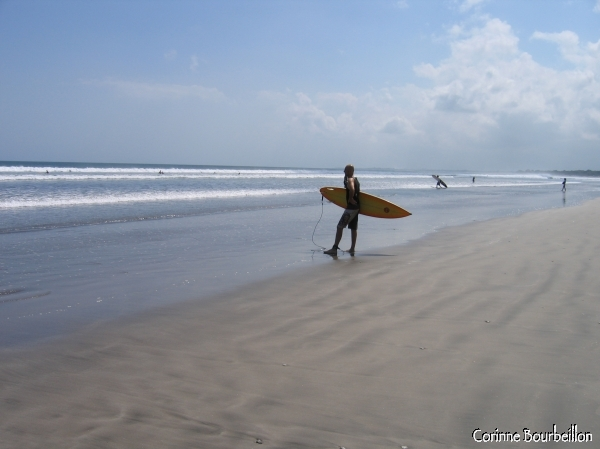 On the huge Kuta Beach, a surfer watches for the wave. (Bali, July 2008)