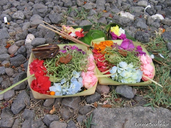 Small basket of offerings in front of the entrance of a warung (restaurant) in Petitenget (Bali).