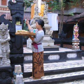 Offrandes du matin dans le jardin de l'hôtel Sorga. (Kuta, Bali)