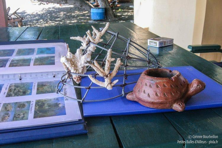 Au bureau de Biorock à Pemuteran, une maquette des structures électriques coralliennes, pour expliquer le projet aux touristes, à côté de l'inévitable cendrier-tortue... (Bali, Indonésie, juillet 2008.)