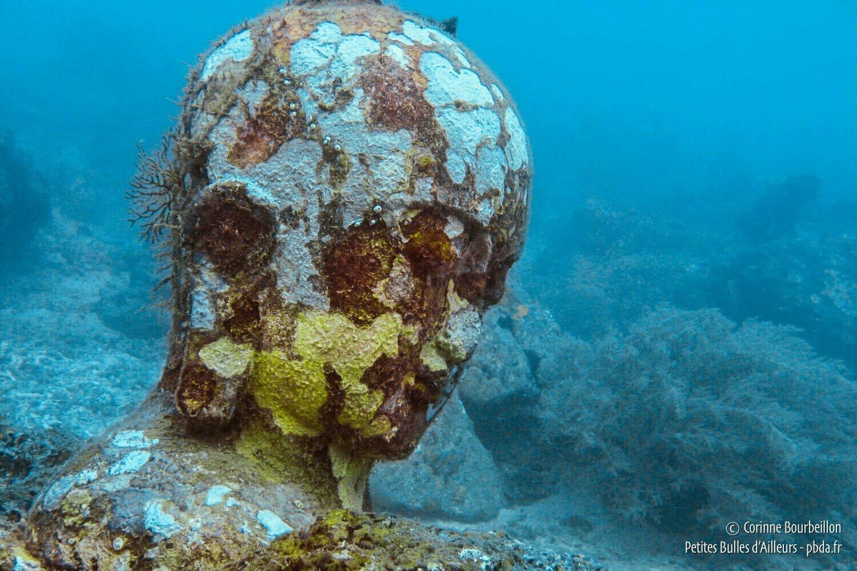 ou suis je,Jovany 15/03/17 bravo Ajonc Martine 13-pemuteran-temple-underwater
