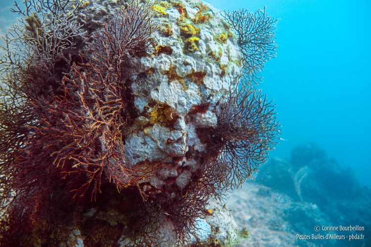 The coral creates strange hairstyles with submerged statues. (Pemuteran, Bali, Indonesia, July 2008.)