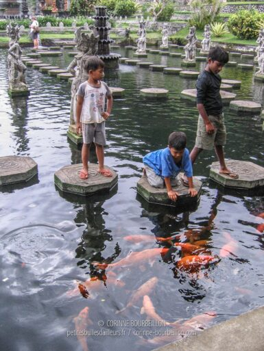 The favorite attraction of the kids: the Tirta Gangga fish pond. (Amlapura Region, Bali, Indonesia, July 2008)