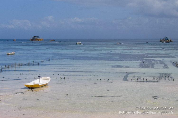Nusa Lembongan, Bali, Indonésie. Juillet 2008.