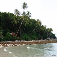 At the end of Long Beach, a secluded bungalow under the coconut trees. (Perhentian Kecil, Malaysia, July 2006)