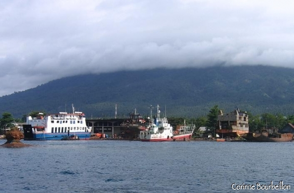 In the Lembeh Strait, huge cargo ships are languishing at anchor.