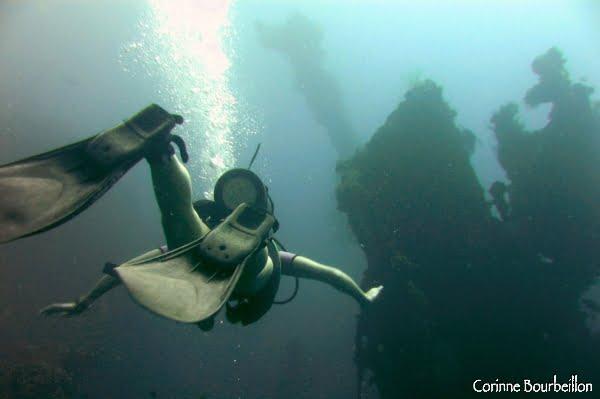 Plongée sur l'épave du Liberty. (Tulamben, Bali. Juillet 2008)