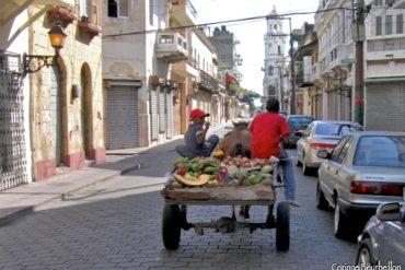 - Press trip to the Dominican Republic: Punta Cana, Samana, Santo Domingo, Bayahibe. January 2009.