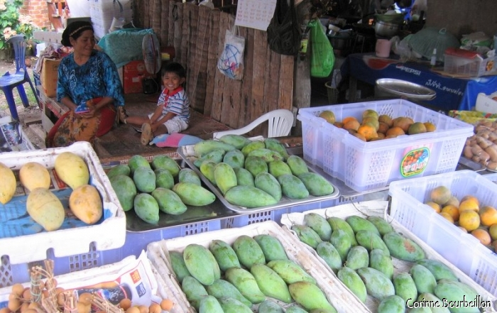 Fruit stall at Koh Yao Noi market. Thailand, February 2009.