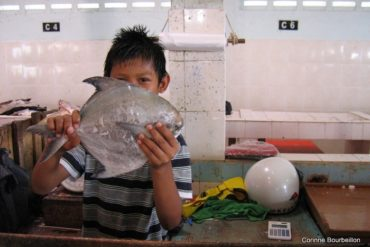 At the fish market in Tawau (Borneo, Malaysia, July 2009).