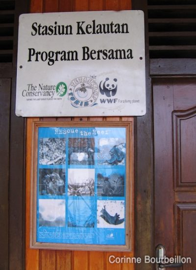 The WWF center in Derawan. (Borneo, Indonesia, July 2009).
