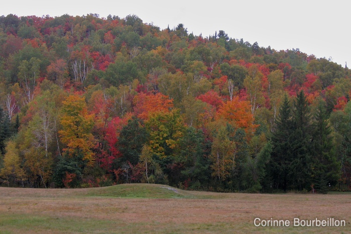 Autumn in the Laurentians (Domaine Saint-Bernard, Quebec, Canada).
