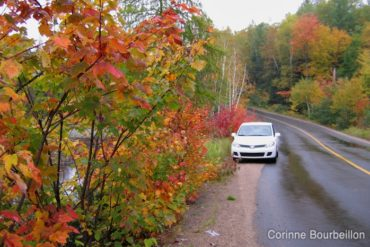 Autumnal trip in the Laurentians (Quebec, Canada).