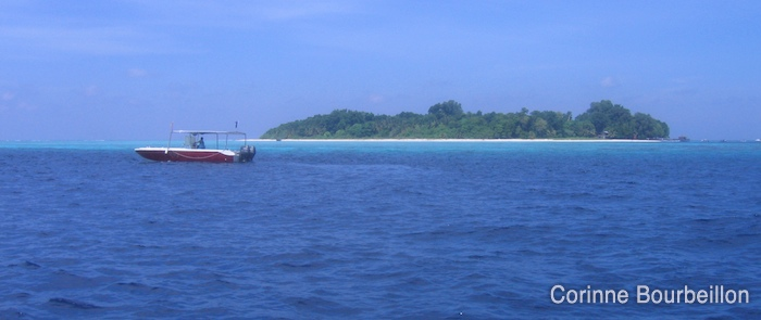 The island of Sipadan, seen from the sea. Malaysia, Borneo, July 2009.