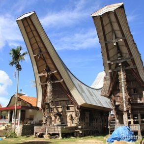 """Greniers à riz, avec le toit """"tongkonan"""", typique du pays Toraja. Sulawesi, juillet 2010."""