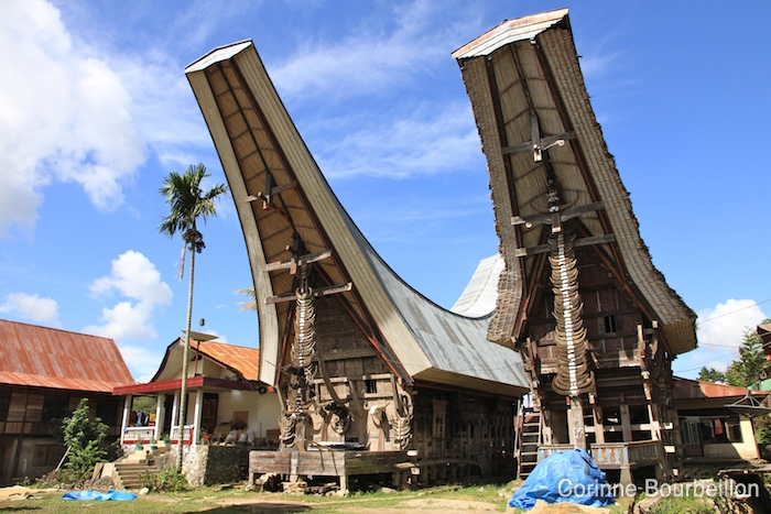 "Rice granaries, with the roof ""tongkonan"", typical of the country Toraja. Sulawesi, July 2010."