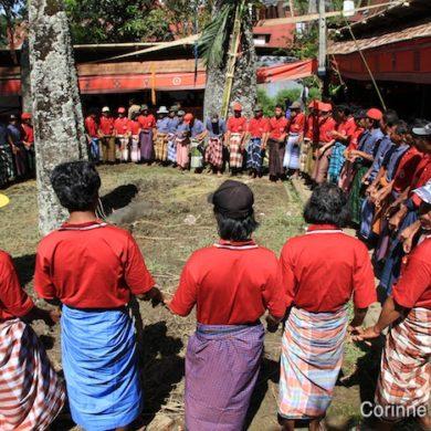 Cérémonie funéraire à Bori. Pays Toraja, Sulawesi, juillet 2010.