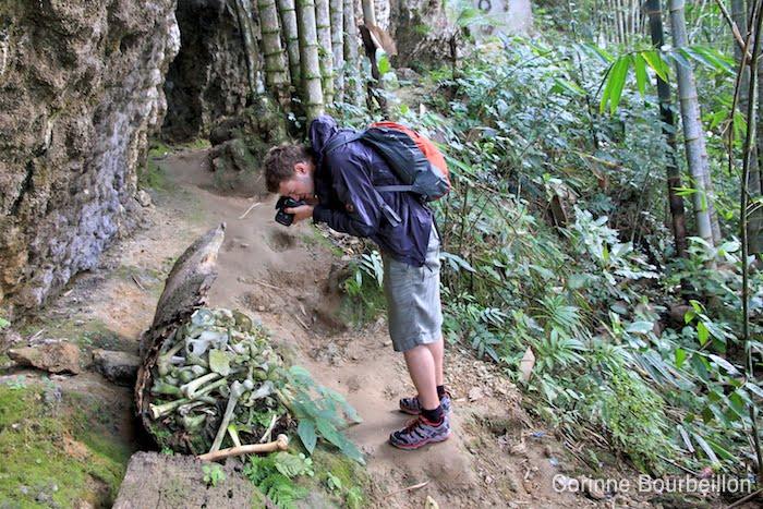 Ket'e Kesu. Les tombes suspendues tombées au sol révèlent les ossements qu'elles contiennent. Pays Toraja, Sulawesi, Indonésie. Juillet 2010.