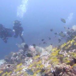 Bangka Island underwater.