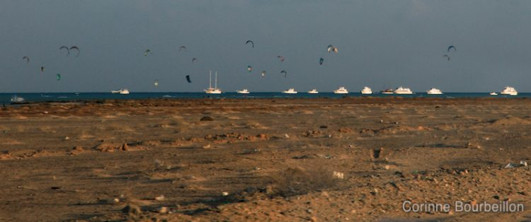Kite-surfs in the south of Egypt, near Hamata. November 2011.