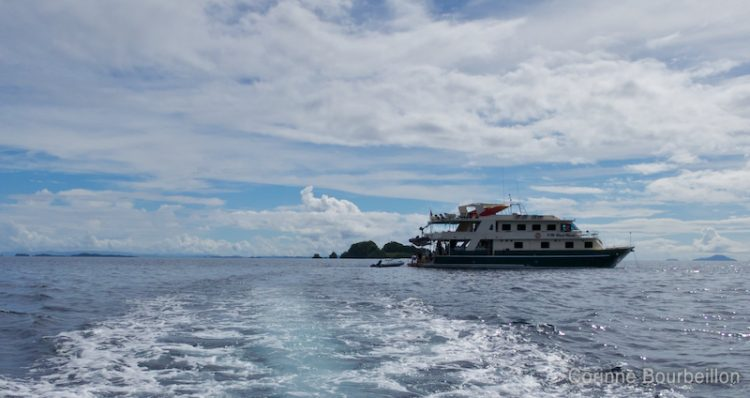 The Black Manta to Raja Ampat. West Papua, Indonesia.