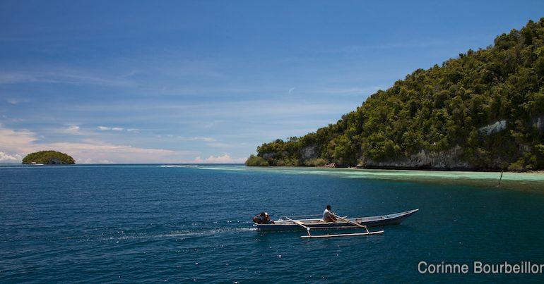 Raja Ampat, Papouasie, Indonésie. Mars 2012.