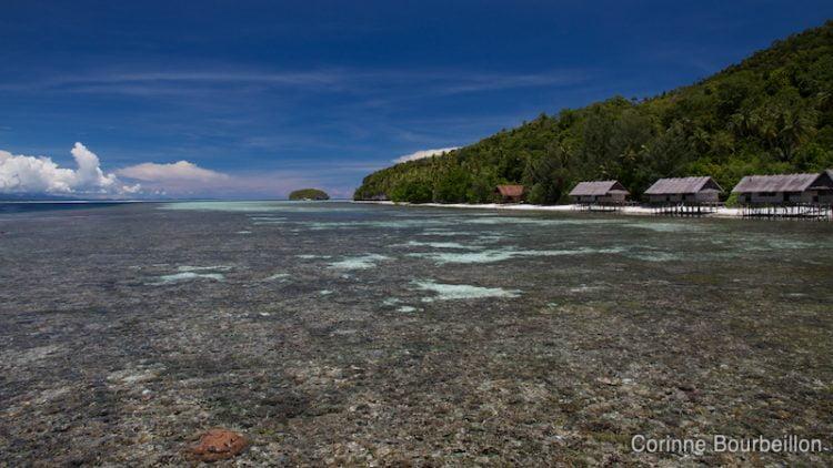Le Kri Eco Resort. Raja Ampat, Papouasie, Indonésie, mars 2012.
