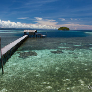 The dock of Sorido Bay Resort, sea and coral side, in Kri. Raja Ampat, Papua Barat, Indonesia. March 2012.