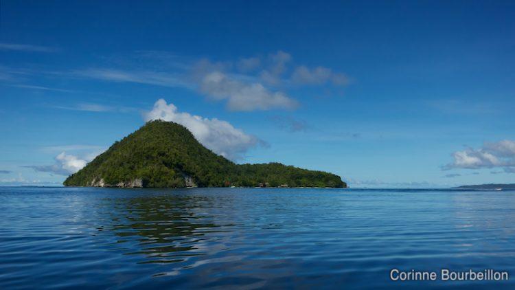 Kri Island. Raja Ampat, Papua Barat, Indonesia. March 2012.