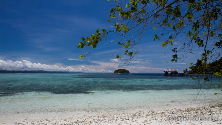 The view from my bungalow at Sorido Bay Resort on Kri Island. Raja Ampat, Papua Barat, Indonesia. March 2012.