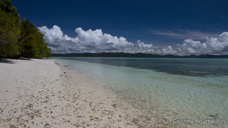 """My"" beach. Kri Island, Raja Ampat, Papua Barat, Indonesia. March 2012."