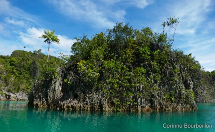 The karst islets dot the turquoise water. (Raja Ampat, West Papua, Indonesia, March 2012.)