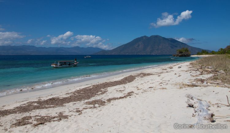 The beach of Pantar Island. Alor, Indonesia. July 2012.