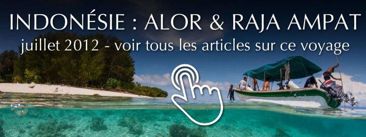 Voyage Indonésie : Alor et Raja Ampat - juillet 2012