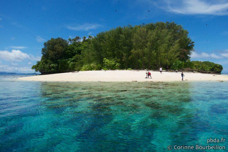 Mioskon Island. Raja Ampat. West Papua, Indonesia. July 2012.