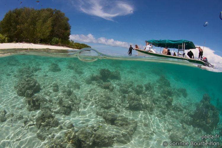 Mioskon Island. Raja Ampat. Papouasie occidentale, Indonésie. Juillet 2012.