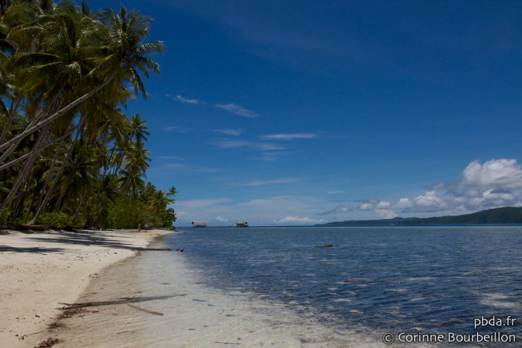 Great weather on Kri Island! Raja Ampat, Indonesia, March 2012.