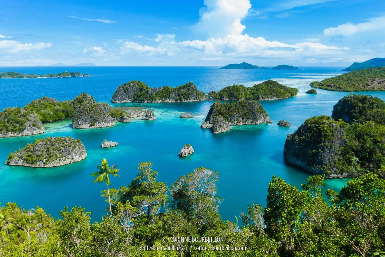 L'archipel de Fam. (Raja Ampat, Papouasie occidentale, Indonésie, janvier 2015)