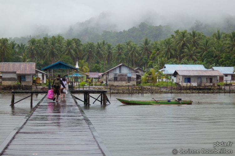 A sudden downpour comes to fog up ... Raja Ampat, Indonesia, March 2012.