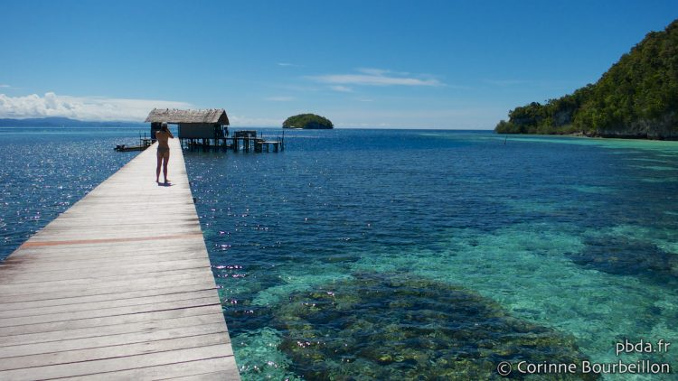 Sorido Bay Jetty, Kri Island, Raja Ampat. Papua, Indonesia, July 2012.