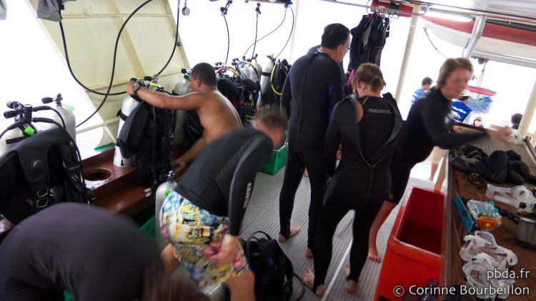 Raja Ampat Cruise-Diving (Black Manta). Papua, Indonesia. March 2012.