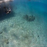 Snorkeling at Weda Bay. Halmahera, Indonesia. March 2013.