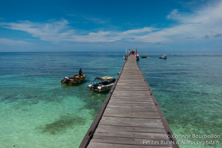 The Kakaban pontoon. Borneo, Indonesia. July 2013.
